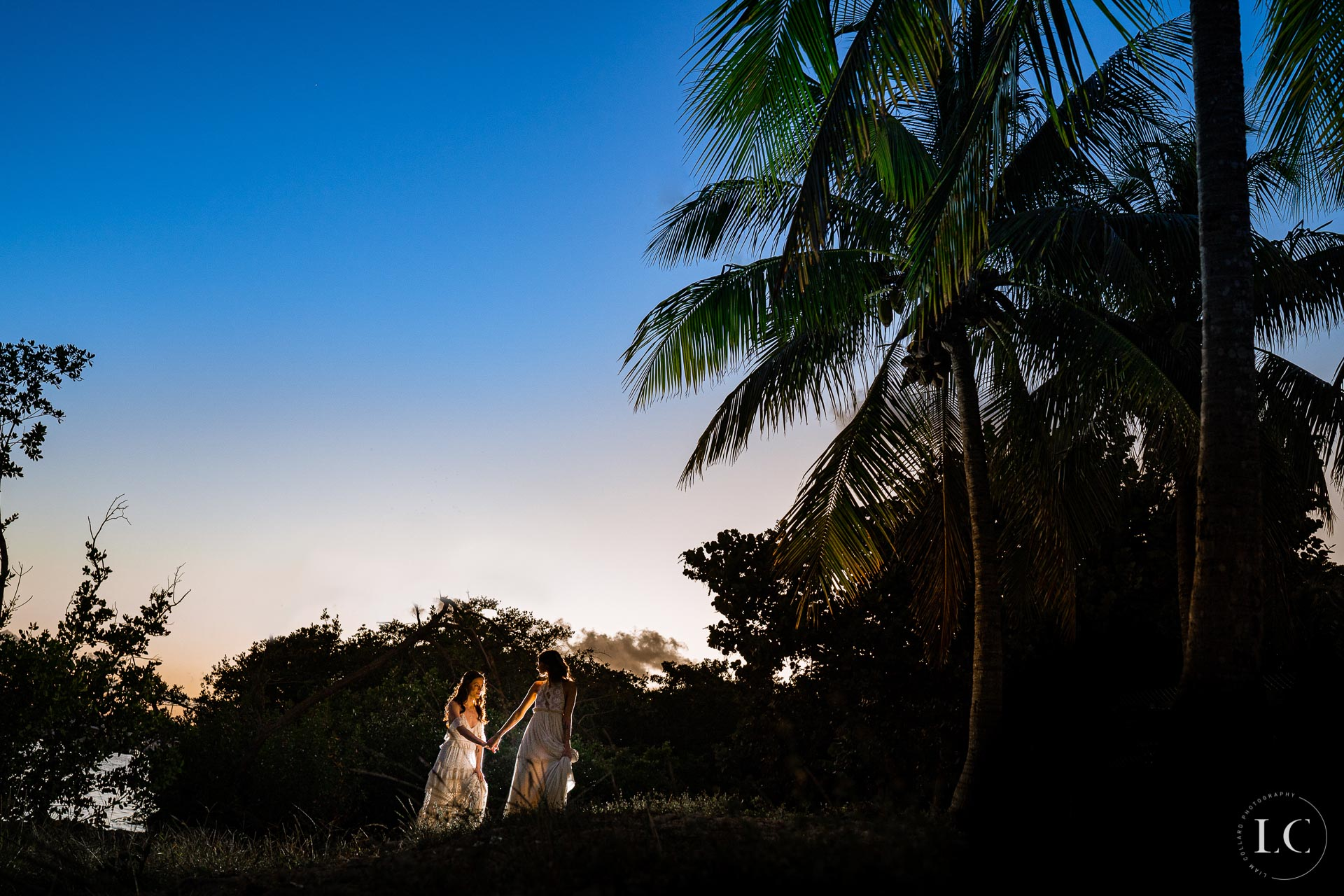 Sunset far angle of same sex brides